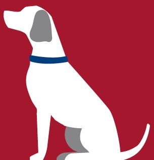 Alabama Rot dog 2